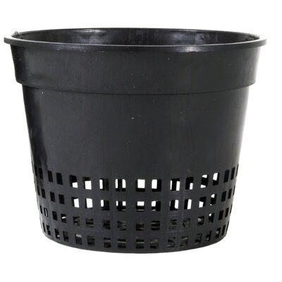 """Plastic Nursery Pot Size: 6"""" W"""
