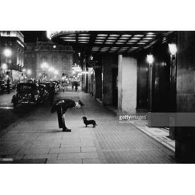 GettyImagesGallery Commissionaire's Dog by Kurt Hutton Photographic Print