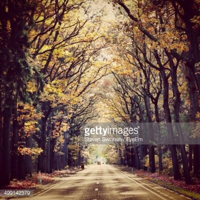 GettyImagesGallery View of Empty Country Road Along Trees by Steven Swinnen/EyeEm Photographic Print
