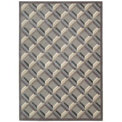Nourison Graphic Illusions Black/Gray Geometric Area Rug
