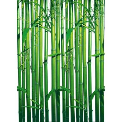 NEXT! BY REINDERS Bambus 2.54m L x 183cm W Roll Wallpaper