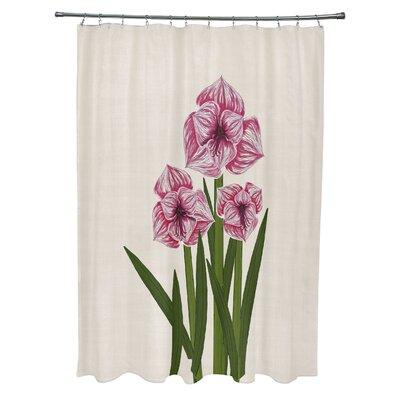 Amanda Amaryllis Floral Print Shower Curtain Color: Pink