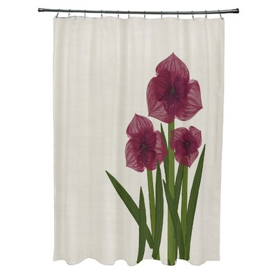 Amanda Amaryllis Floral Print Shower Curtain Color: Red