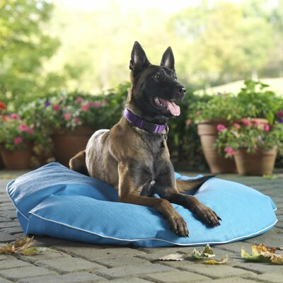 Cleo Poochie Pool Mat Size: Medium, Color: Lime