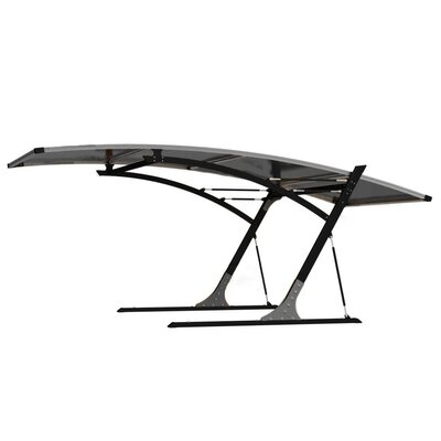 10 Ft. x 19.5 Ft. Canopy Color: Gray