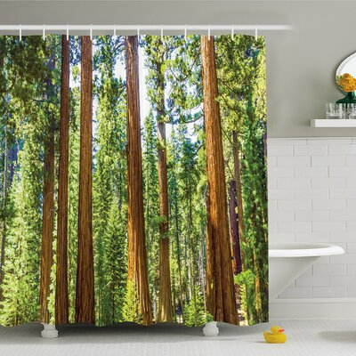 """National Parks Home Branches Spring Conifers Sequoia Shower Curtain Set Size: 70"""" H x 69"""" W"""