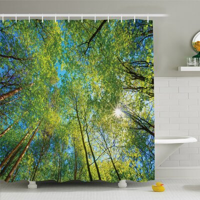 """Forest Evergreen Back Nature Area Mother Earth Lime Trunk Mangrove Flora Willow Decor Shower Curtain Set Size: 75"""" H x 69"""" W"""