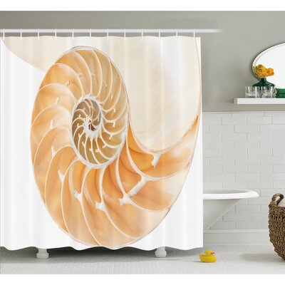 """Nautilus Shell Showing the Chambers in Distance Curves Helix Hidden Print Shower Curtain Set Size: 84"""" H x 69"""" W"""