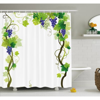 "Grapes Vineyard with Swirled Leaf Fresh Fruit Garden Harvest Season Wine Growth Shower Curtain Set Size: 70"" H x 69"" W"