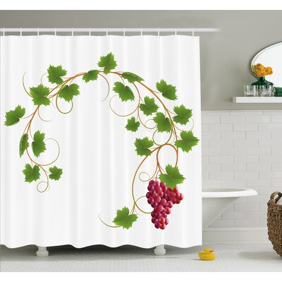 """Grapes Curved Ivy Branch Deciduous Woody Wines Seed Clusters Cabernet Kitchen Shower Curtain Set Size: 70"""" H x 69"""" W"""