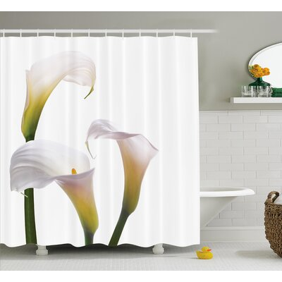 """Bowdoin Lilac Bouquet Pure Calming Relaxing Modern Floral Design Photo Image Shower Curtain Size: 69"""" W x 75"""" H"""