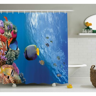 "Bettye Tropical Emperor Long Living Angelfish Shower Curtain Size: 69"" W x 70"" H"