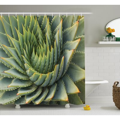 "Kaden Cactus Botanic Spikey Wild Nature Inspired Western Dessert Plant Flower Artwork Image Shower Curtain Size: 69"" W x 70"" H"
