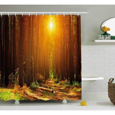 """Wilksboro Landscape Sunset Dawn Sun Rise Beams Shower Curtain Size: 69"""" W x 70"""" H"""