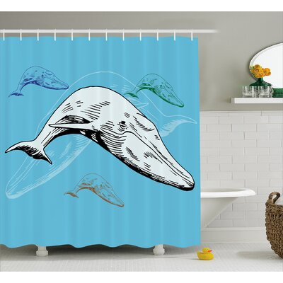 "Animal Ocean Whales Hand Drawn Shower Curtain Size: 69"" W x 75"" L"