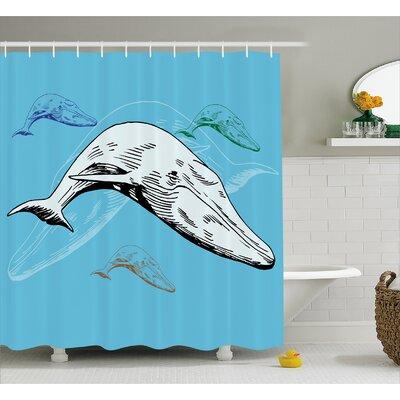"Animal Ocean Whales Hand Drawn Shower Curtain Size: 69"" W x 75"" L"