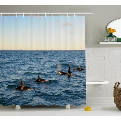 """Photo Whales in Sea Ocean Shower Curtain Size: 69"""" W x 84"""" L"""