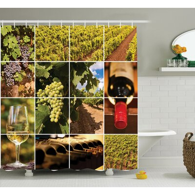 "Megan Red Vineyard Landscapes Shower Curtain Size: 69"" W x 70"" L"
