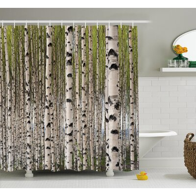 "Tree Birch Trees with Leaves Shower Curtain Size: 69"" W x 70"" L"