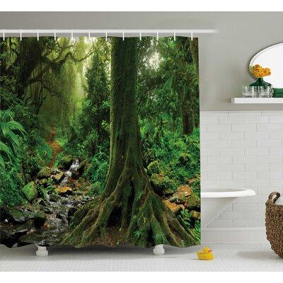 "Rain Forest Decor Shower Curtain Size: 69"" H x 84"" W"
