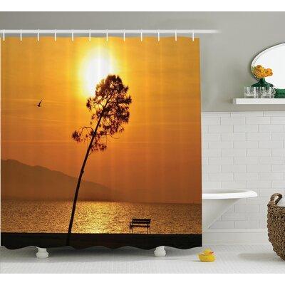 """Clovis Sea Sun Decor Shower Curtain Size: 69"""" H x 75"""" W"""