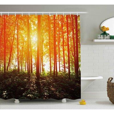 "Sunrays Reflecting Shower Curtain Size: 69"" H x 70"" W"