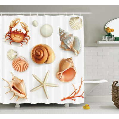 """Seashells Pearls and Crabs Shower Curtain Size: 69"""" H x 84"""" W"""