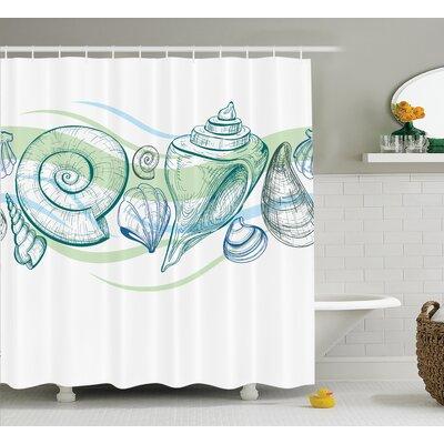 "Cafferkey Seashells Shower Curtain Size: 69"" H x 70"" W"