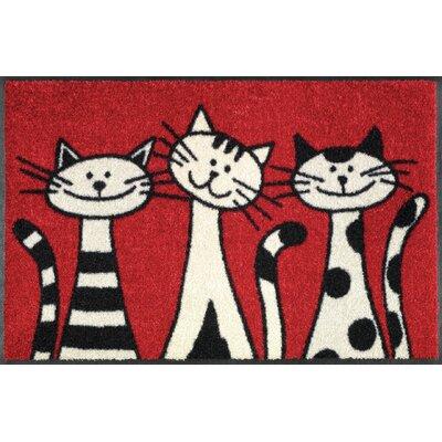 Wash+dry Fußmatte Three Cats