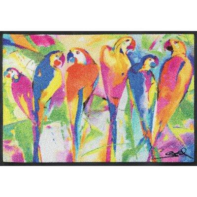 Wash+dry Fußmatte Parrots Party