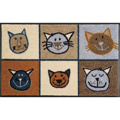 Wash+dry Fußmatte Miau Miau