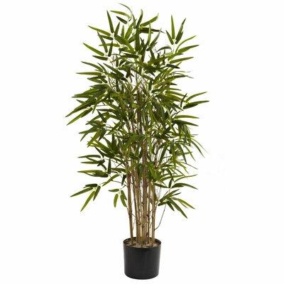 Twiggy Bamboo Tree in Pot