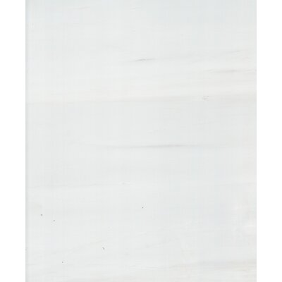 """6"""" x 3"""" Dolomite Marble Tile in Polished White"""