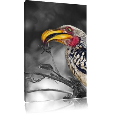 Pixxprint Amazing Yellow-Billed Hornbill Eating Black and White Photographic Print on Canvas