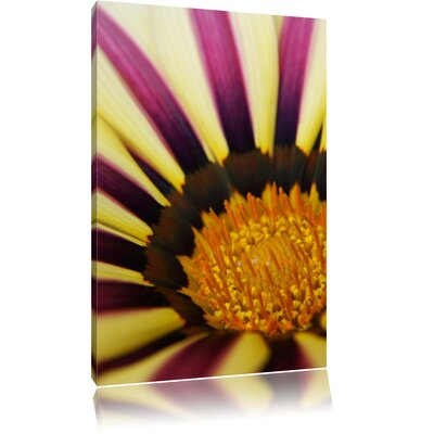 Pixxprint Beautiful Striped Blossom Photographic Print on Canvas