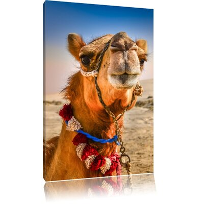 Pixxprint Funny Camel in Hot Desert Photographic Print on Canvas