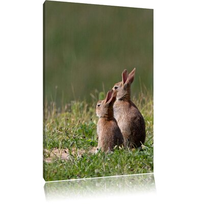 Pixxprint Two Bunnies in the Meadows Photographic Print on Canvas