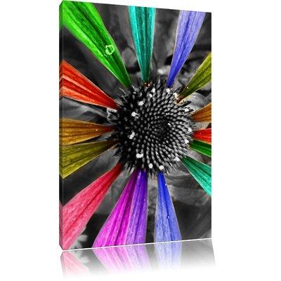 Pixxprint Colourful Petals Photographic Print on Canvas