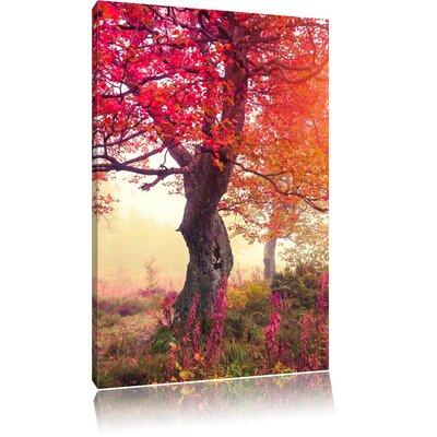 Pixxprint Dreamy Autumn Forest Photographic Print on Canvas