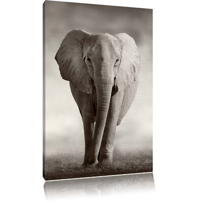 Pixxprint Lonesome Elephant in African Savannah Photographic Print on Canvas