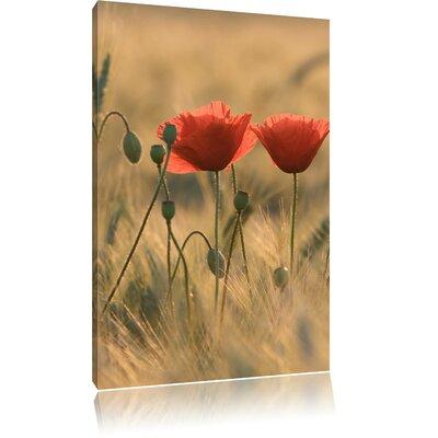 Pixxprint Poppies at Dusk Photographic Print on Canvas