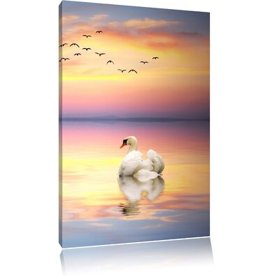 Pixxprint Singular Swan in Front of Golden Horizon Photographic Print on Canvas