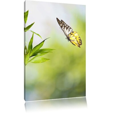 Pixxprint Fresh Green Bamboo with Beautiful Butterfly Photographic Print on Canvas
