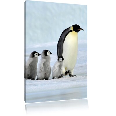 Pixxprint Little Emperor Penguin Family in the Snow Photographic Print on Canvas