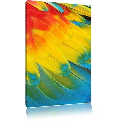 Pixxprint Colourful Parrot Feathers Photographic Print on Canvas
