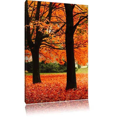 Pixxprint Red-Coloured Tree Promenade in Autumn Photographic Print on Canvas