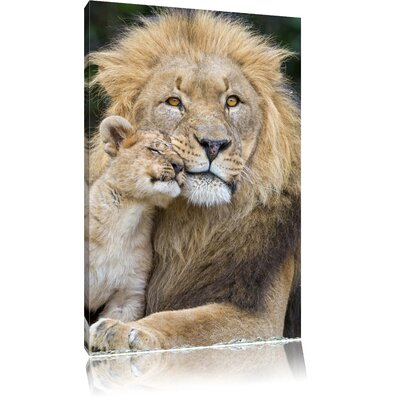 Pixxprint Loving Lion Daddy with Cub Photographic Print on Canvas