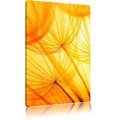 Pixxprint Sea of Dandelions in Golden Light Photographic Print on Canvas