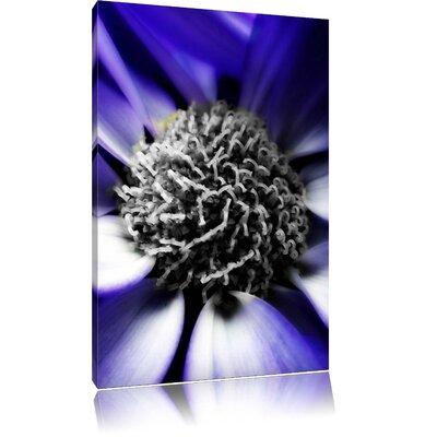 Pixxprint Elegant Marguerite Black and White Photographic Print on Canvas