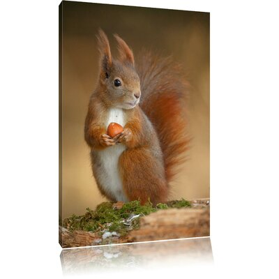 Pixxprint Little Squirrel with Crunchy Nut Photographic Print on Canvas